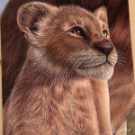 Drawing Simba | The Lion King